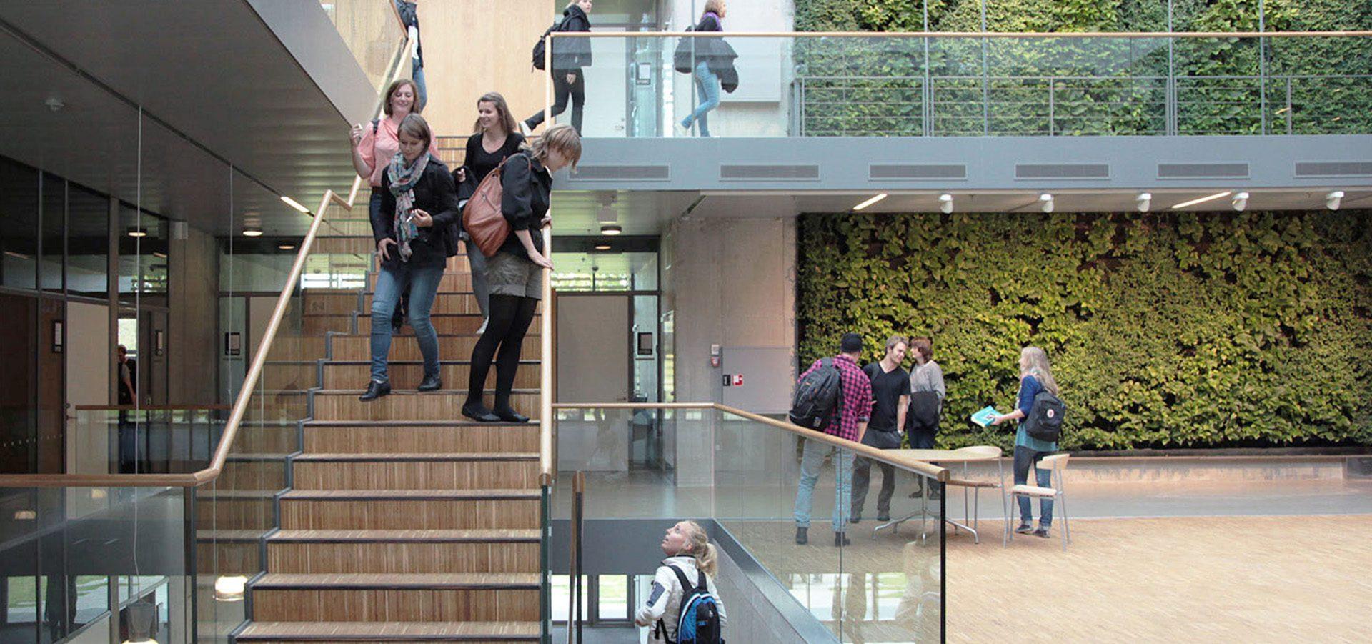 ZESO 教育  // 丹麦南丹麦大学38号楼
